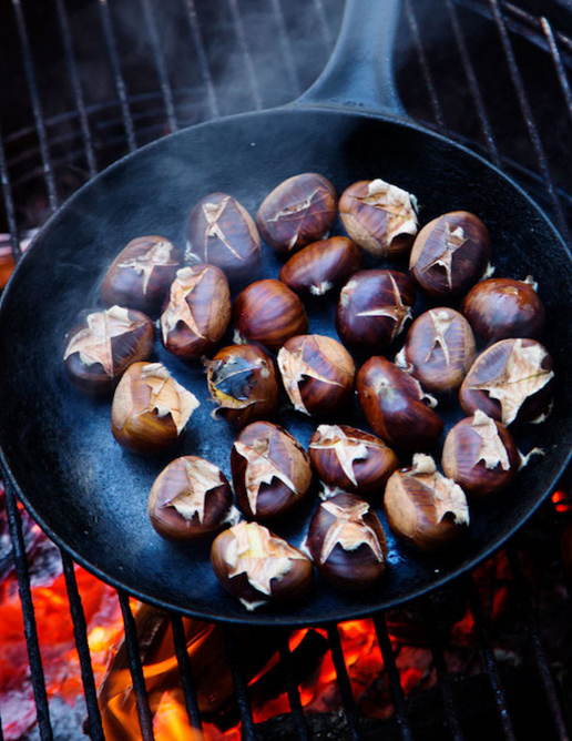13 PRODUCE annette forrest food stylist Chestnuts-on-fire-pit